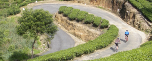 Sri Lankan switchbacks; courtesy Grasshopper Adventures
