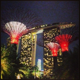 Gardens by the Bay & Marina Bay Sands, Singapore