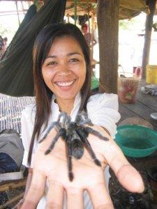 Spider Market in Skoun Cambodia on Talk Travel Asia Podcast photo by Trevor Ranges