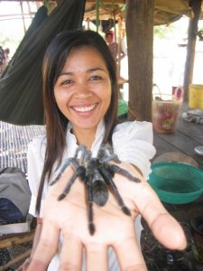 Spider Market in Skoun Cambodia on Talk Travel Asia Podcast photo by Trevor Ranges