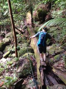 Hiking Kuching