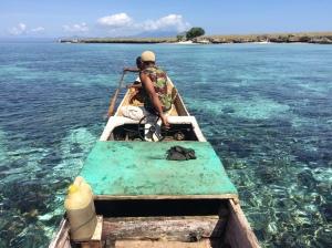 snorkelling trip off Pantar in the Lesser Sunda Islands