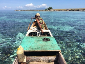 snorkelling trip off Pantar in the Lesser Sunda Islands
